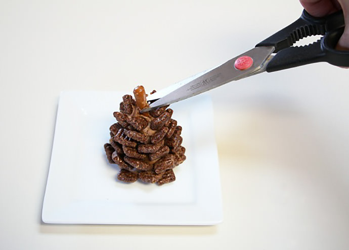 10-chocolate-pinecone-recipe-2