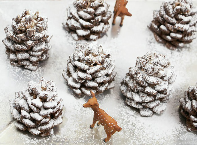 14-chocolate-pinecone-recipe-2