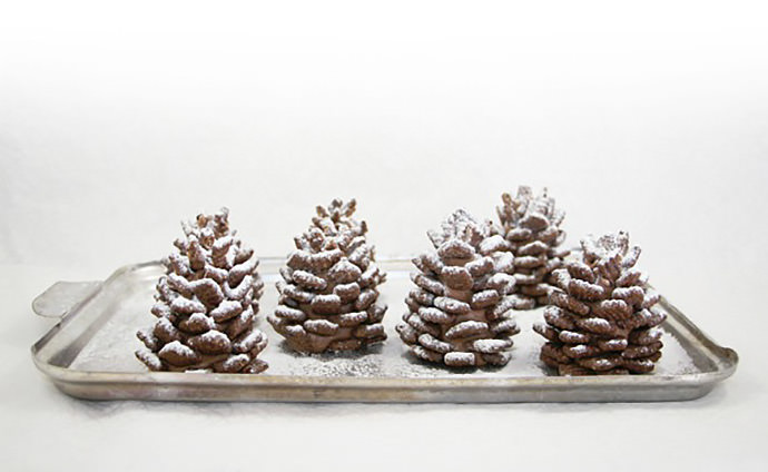 15-chocolate-pinecone-recipe-2